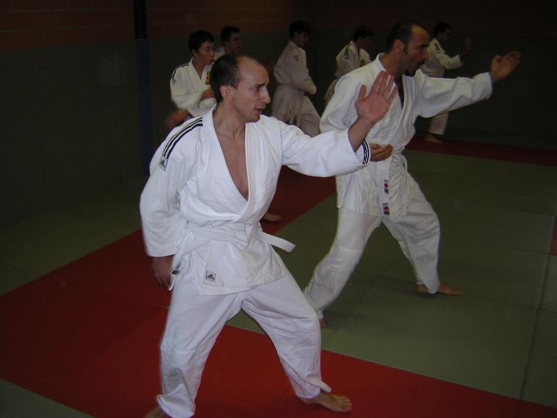 Karate: Shuto Uke (5/2...